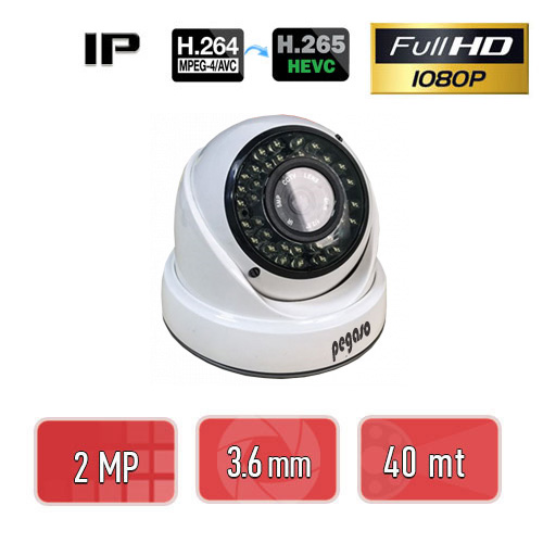 PEGASO PGS-3220H 2 MP, 3.6 MM, 36 IR LED, IP DOME GÜVENLİK KAMERASI